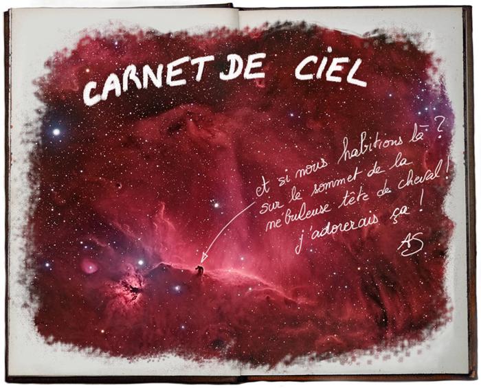 http://carnetderien.cowblog.fr/images/F696.jpg
